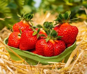 Erdbeeren kleine Schale 250g